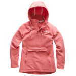 The North Face Tekno Ridge Pullover Hoodie Womens Closeout